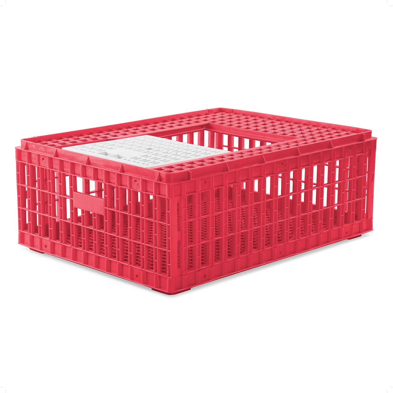 Poultry Box (Red)